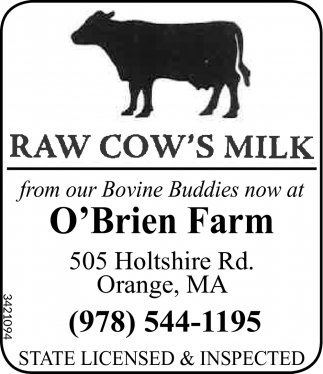 From Our Bovine Buddies Now At O'Brien Farm