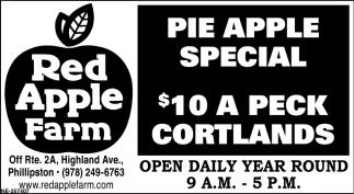 Pie Apple Special